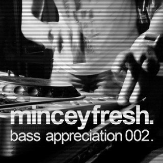 minceyfresh - 2011 01 - bass appreciation 002